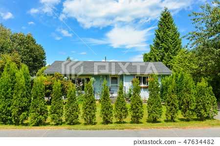 Little blue family house behind decorative trees growing into the hedge. 47634482