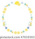레몬 프레임 일러스트 47639363
