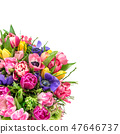 Bouquet spring tulip flowers isolated white backgr 47646737