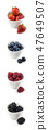vertical collection of berries in bowles 47649507