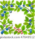 bilberry vector frame 47649512