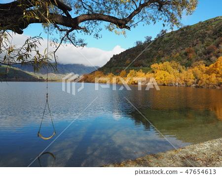New Zealand Hayes Lake 47654613