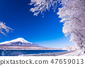 (Yamanashi Prefecture) Mt. Fuji desiring from snow-covered mountain lakeside 47659013