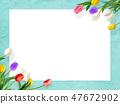 배경 - 꽃 - 벽 - 봄 - 블루 - 튤립 - 화이트 보드 47672902