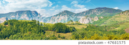 gorgeous panorama of countryside in springtime 47681575