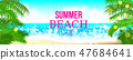 Summer time club seashore palm landscape 47684641