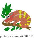 chameleon vector animal 47689611