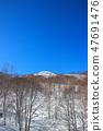 ภูเขาหิมะ 47691476