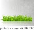 绿色 树叶 叶子 47707892