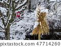 Traditional sheaf of oats 47714260