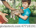 boy, kid, rabbit 47716191