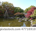 Autumn leaves of Fuchu's forest park 47716910