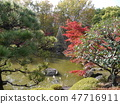 Autumn leaves of Fuchu's forest park 47716911