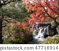 Autumn leaves of Fuchu's forest park 47716914