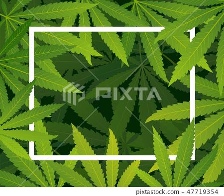 Marijuana plant and cannabis on green background. 47719354