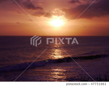 석양의 바다 47731861
