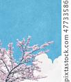 일본식 배경 소재 - 종이의 감촉 - 벚꽃 - 왕 벚나무 - 푸른 하늘 - 구름 47733586