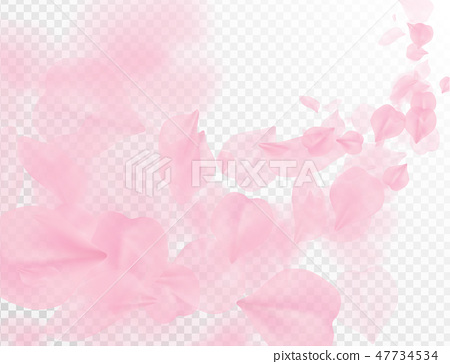 Sakura petal flying vector background. Pink flower 47734534