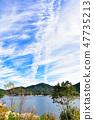 Vertically extending cloud 47735213