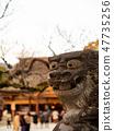 Shoto 47735256