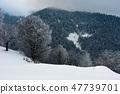 winter dawn in countryside 47739701