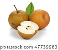 Asian pear or Nashi pear with leaf 47739963