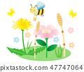 ผึ้งและพืช 47747064