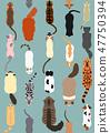 貓無縫模式 47750394