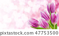 Holiday Nature Floral Background 47753500