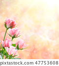 Holiday Nature Floral Background 47753608