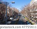 Omotesando 47755611