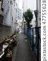 Harajuku Cat Street alley back 47755628