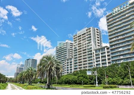 清新的藍天公寓 47756292