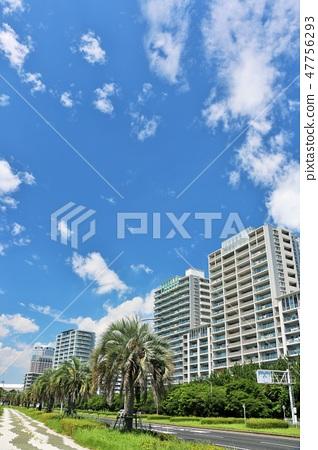 清新的藍天公寓 47756293