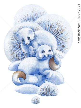 Two cute watercolor stoats surrounded by bushes and snow drifts 47757271