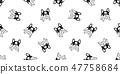 개, 강아지, 프렌치 47758684