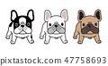 개, 강아지, 벡터 47758693