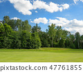 Countryside golf course. Green cutted grass  47761855