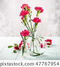 Bouquet of pink carnation on light turquoise wooden background 47767954