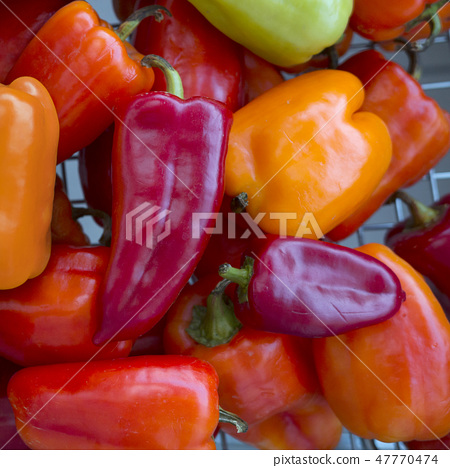 Colorful red, orange, green peppers paprika 47770474