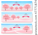 Three spring banners with pink cherry blossom 47771874