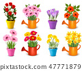 Mega collection of spring and summer flowers 47771879
