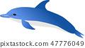ปลาโลมา 47776049