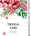 Tropic flowers card Vector watercolor. Delicate 47786873