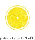 Lemon slice fruit 47787493