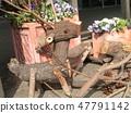 วัตถุหมูป่าและกวางเรนเดียร์ไม้ 47791142