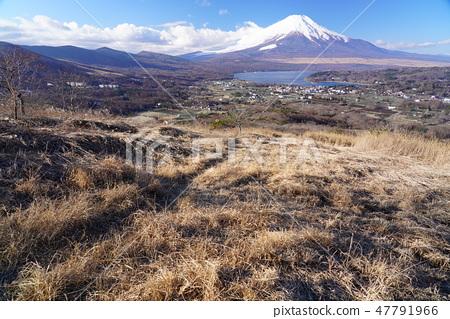 高手山富士山 47791966