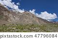 Kashmir horse in beautiful Zanskar landscape India 47796084