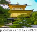 Kinkakuji 47798979