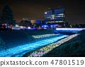 冬天的田邊節的豐田河照明(千葉縣茂原市)2019年2月拍攝的照片 47801519